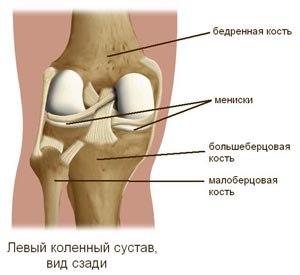 Изображение - Йога для начинающих с поврежденными коленными суставами k1